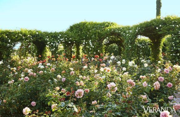 Oprah Winfrey Garden via Veranda 2