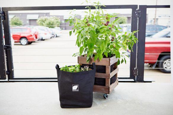 Gardenuity 2