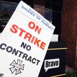 shahs-strike-placard