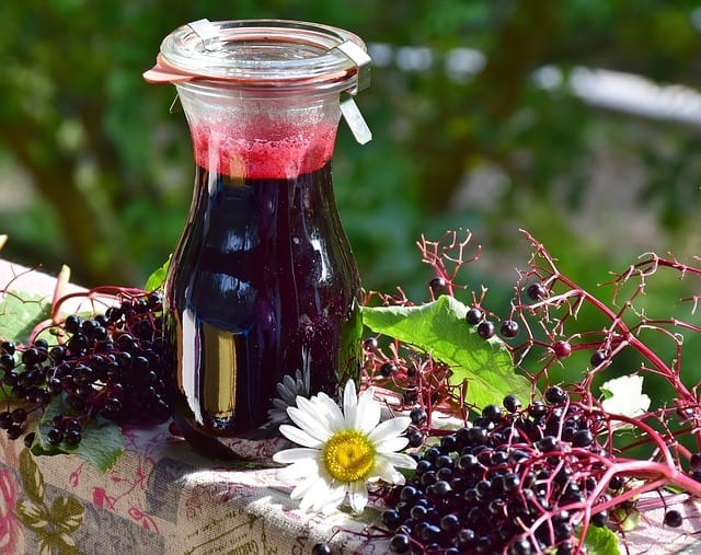Elder Berry For Flu And Colds
