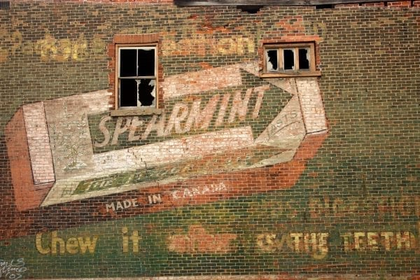 Carvone In Spearmint – How It Works