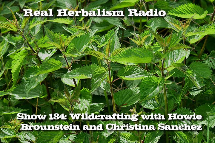 Wildcrafting With Howie Brounstein And Christina Sanchez – Show 184