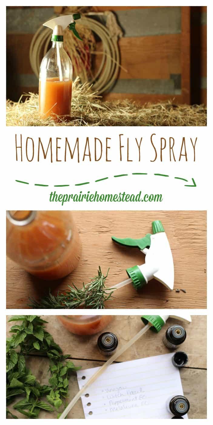 homemade fly spray recipe