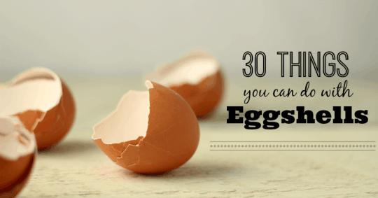 how to use eggshells