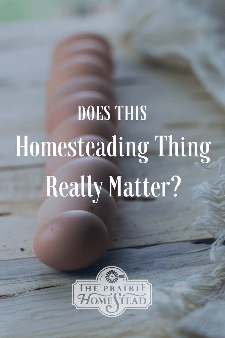 does homesteading really matter