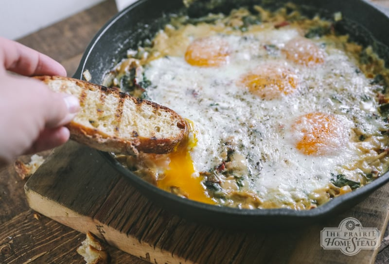 creamed chard and eggs skillet recipe