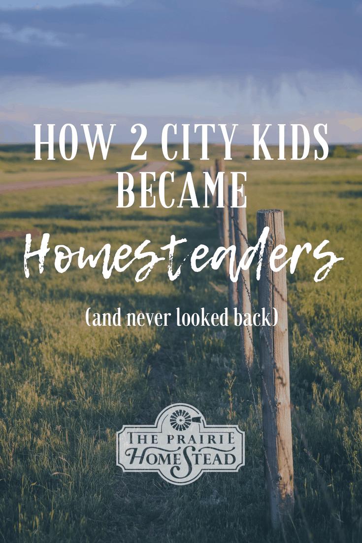 city kids turned homesteader