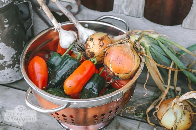 roasted poblano salsa recipe