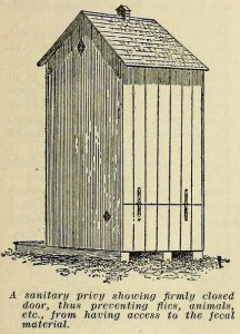 Outhouse from the rear