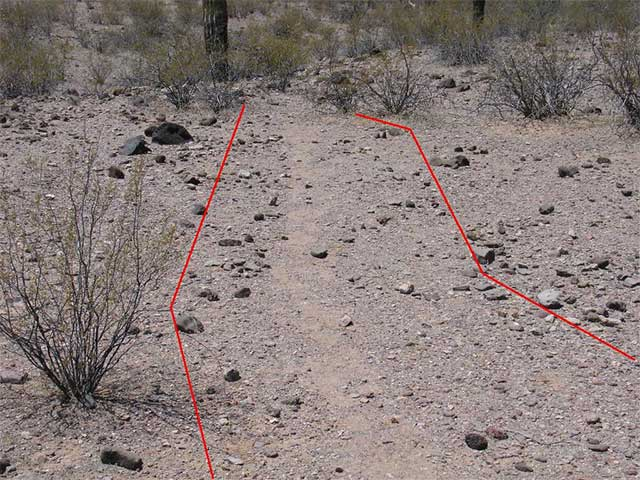 The tracks left by this group greatly exceed what is required for a single file formation.