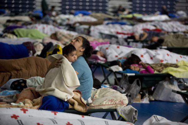 Missing - Sandy shelter