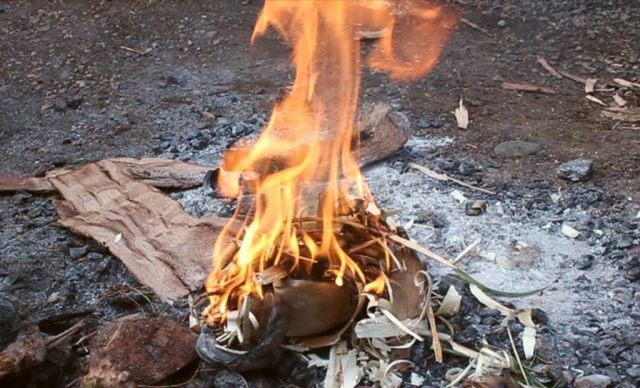 7 Survival Skills You Should Know