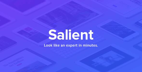 Salient - Responsive Multi-Purpose Theme.