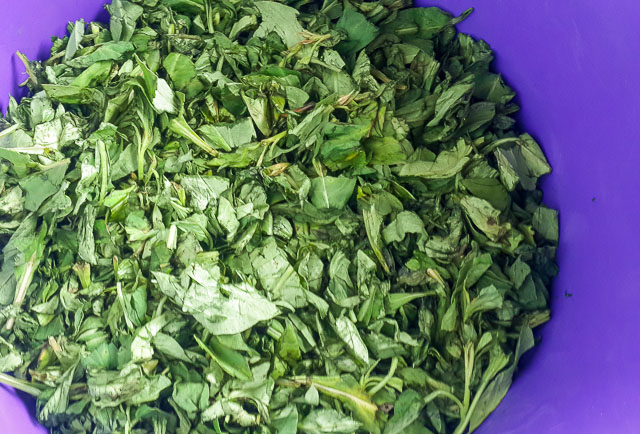shredded shoko vegetable for for Efo riro (vegetable soup)