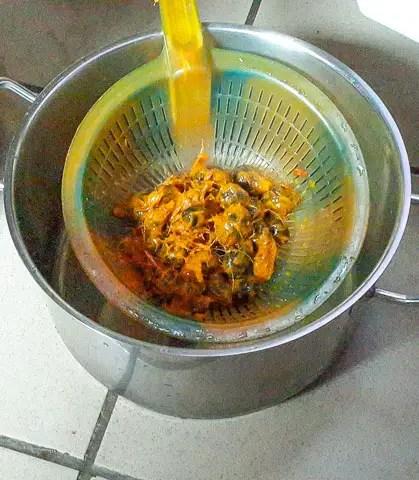 palmnut-1-5