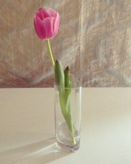 glass vase hire