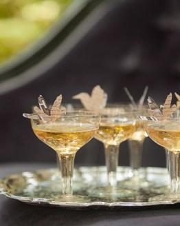 vintage champagne saucer hire