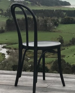 black bentwood hire nz