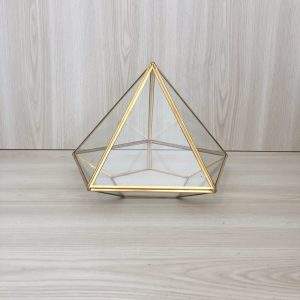 gold terrarium hire nz