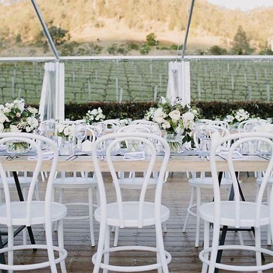 white bentwood chair hire auckland