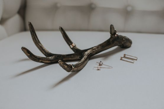 faux gold antler hire auckland nz