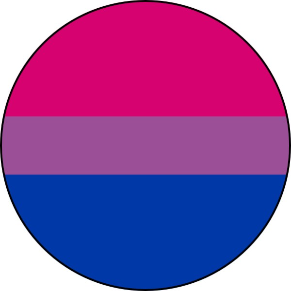 Bisexual Pin Badge For Sale