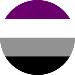 Asexual Pride Flag Pin Badge for sale