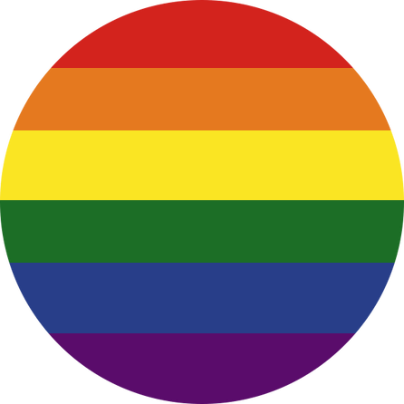 Pride Flag Pin Badge For Sale