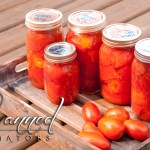 3 ingredient, real food, paleo friendly: Caveman Canned Tomatoes are so easy! http://wp.me/p4Aygm-1FD