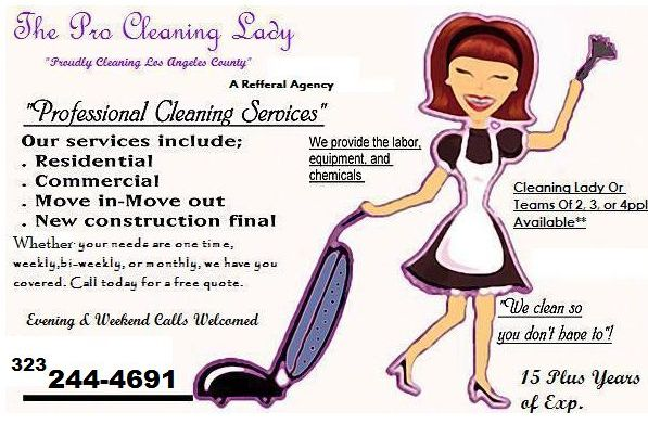 The Pro Cleaning Lady Serving Los Angeles County Home