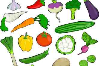 Photo of drawn vegetables.