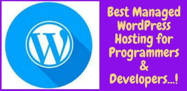 Best Managed WordPress Hosting for Programmers & Developers