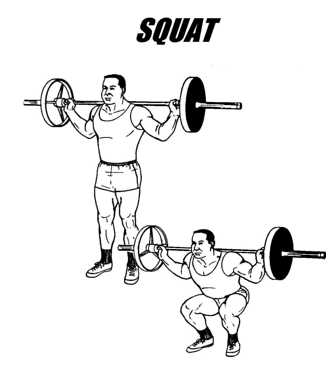 Squatter On Squats And Squatting