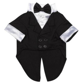 East Side Collection Polyester/Cotton Yappily Ever After Dog Groom Tuxedo, Small, 12-Inch