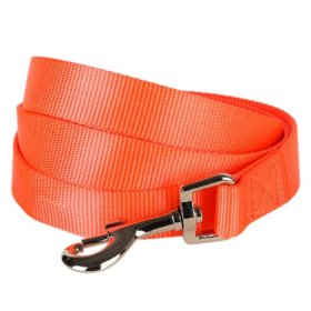 Blueberry Pet Collars Leashes 3/8″ by 6-Feet Long Classic Solid Basic Nylon Dog Leash for Puppy Made For Last – Florence Orange , X-Small Dog Lead