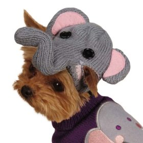 Zack & Zoey Piggy Back Pals with Dog Sweater and Hat Set, Small/Medium, Elephant