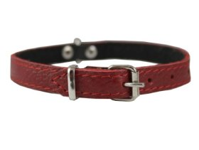 Genuine Leather Felt Padded Dog Collar X-Small 11″x1/2″ Wide Fits 8″-10″ Neck, Chihuahua, Puppies