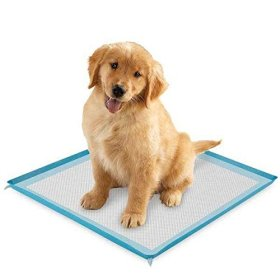 Puppy Pee Pads – 23″ x 22″ Great for Potty Training or Older Dogs – Wee Pad with Scent Remover – Pack of 100 Large Soft Trainer Pads