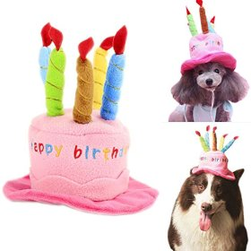 Bro'Bear Dog Birthday Hat with Cake & Candles Design Party Costume Accessory Headwear Pink (One Size Fits Most)