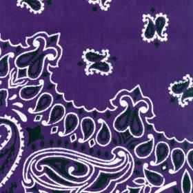 Carolina Have, A, Hank Paisley Bandannas, 22-Inch by 22-Inch, Purple