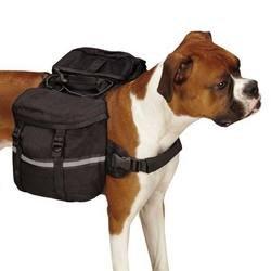 Zack & Zoey Cotton Duck Day Tripper Dog Backpack, Medium, Black