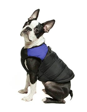 Gooby Padded Cold Weather Vest for Small Dogs with Safe Fur Guard Zipper Closure, Blue, Medium