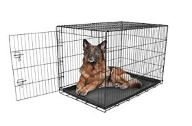 Carlson Secure and Compact Single Door Metal Dog Crate, Extra Large