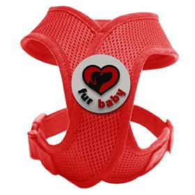 Best Choke-Free Dog Harness to keep your pet safe and comfortable. Harnesses are far superior to a collar to protect the neck and throat of your pet. Sizes for small dogs breeds and puppies. High quality similar to Puppia and Webmaster. Perfect to use in dog training or for a puppy. MEASURE YOUR DOG USING THE SIZE CHART IN THE IMAGES BEFORE BUYING. 100% Satisfaction Guarantee (Red, Small)