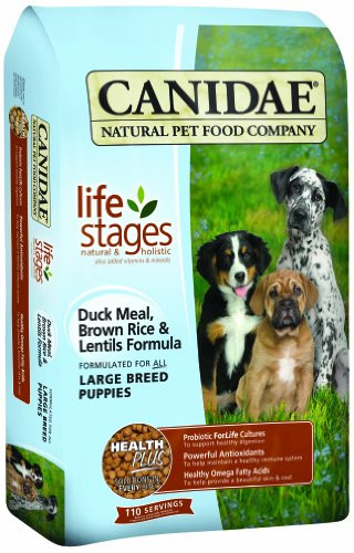 CANIDAE Life Stages Duck Meal, Brown Rice & Lentils Formula For Large Breed Puppies