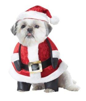 California Costume Collections Santa Pup Dog Costume, Medium
