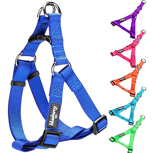 Blueberry Pet Step-in Harnesses Classic Solid No Pull Dog Harness Adjustable Made For Last – Royal Blue, Nylon 5/8″ Small