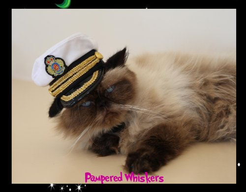 Commanding Officer naval hat for small dogs and cats