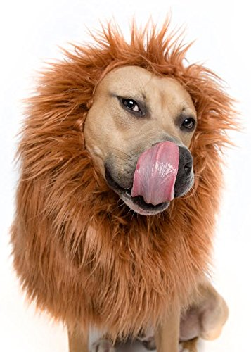 Lion Mane Wig for Large Dog Costume – Great for Halloween!