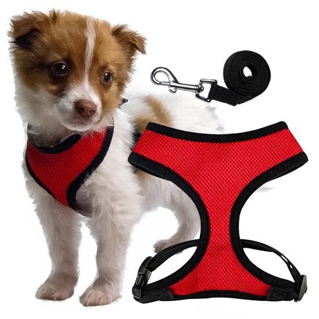 Soft Dog Harness for Puppies and Toy Breeds – Small – Includes a 4ft Leash
